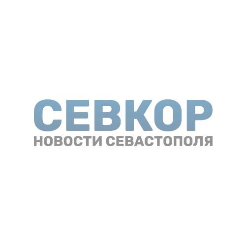 sgfr-partners-sevkor_